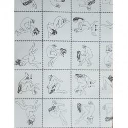 ADULT GIFT WRAP - Envoltura de regalo con imagenes de posiciones